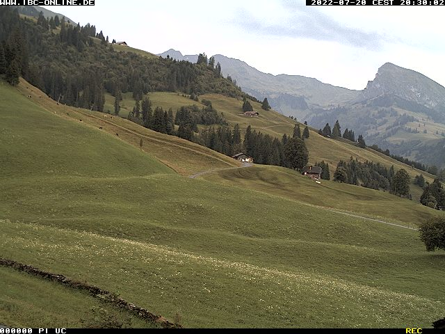 Webcam Diemtigtal